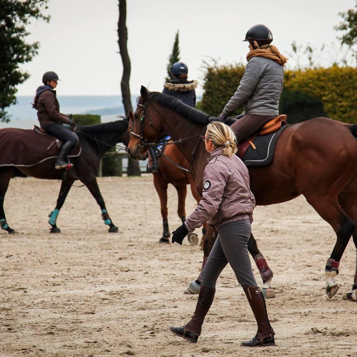 aide établissement équestre : 120 €/cheval